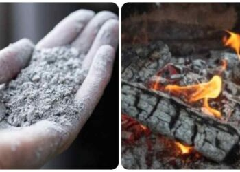 Ceniza de chimenea, aquí se explica cómo reutilizarla con reciclaje creativo