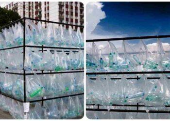 Crea un laberinto a partir de botellas de plástico.