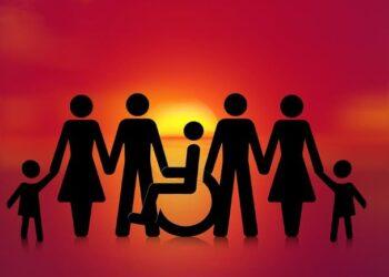 barem grau discapacitat
