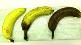 Conservación de los plátanos: ¿Cómo mantenerlos más tiempo?