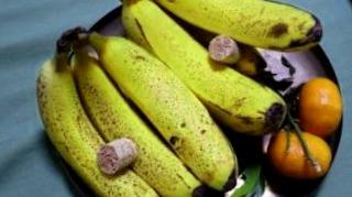 conserver fruits 5300 mini