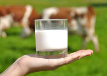 mascarilla de leche